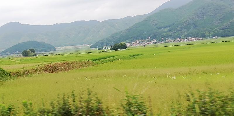 「青野山(907m) 島根県津和野町」関連記事を表示カテゴリーバナー「ポチっとお願いします!」タグ